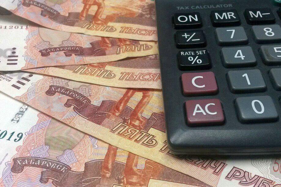 бюджетный кредит и государственный кредит разница